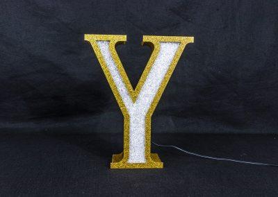 Acrylic Y